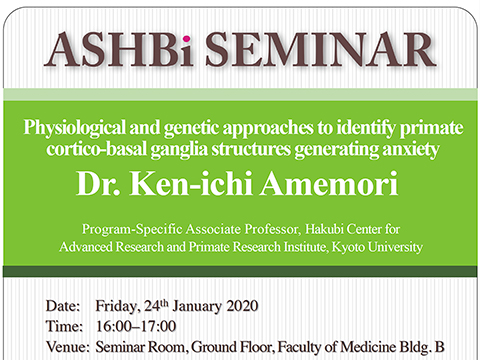 "ASHBi Seminar"" Physiological and genetic approaches to identify primate cortico-basal ganglia structures generating anxiety"" on January 24th"