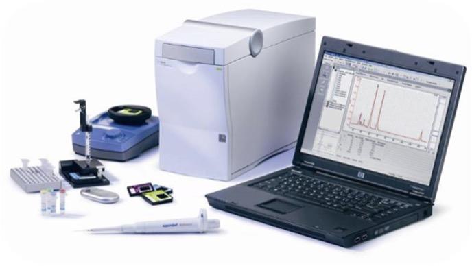 2100 バイオアナライザ電気泳動システム (Agilent)