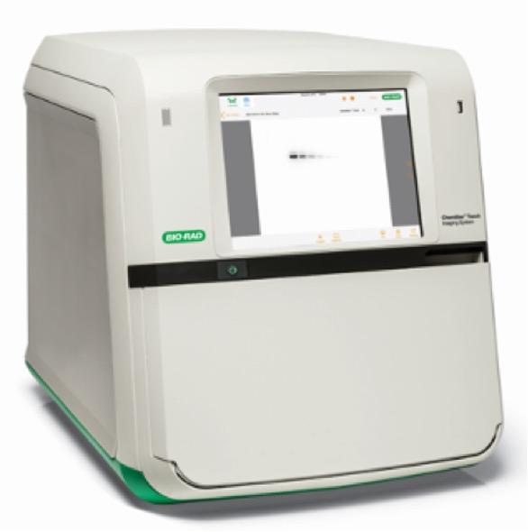 ChemiDoc Touch イメージングシステム (Bio-Rad)
