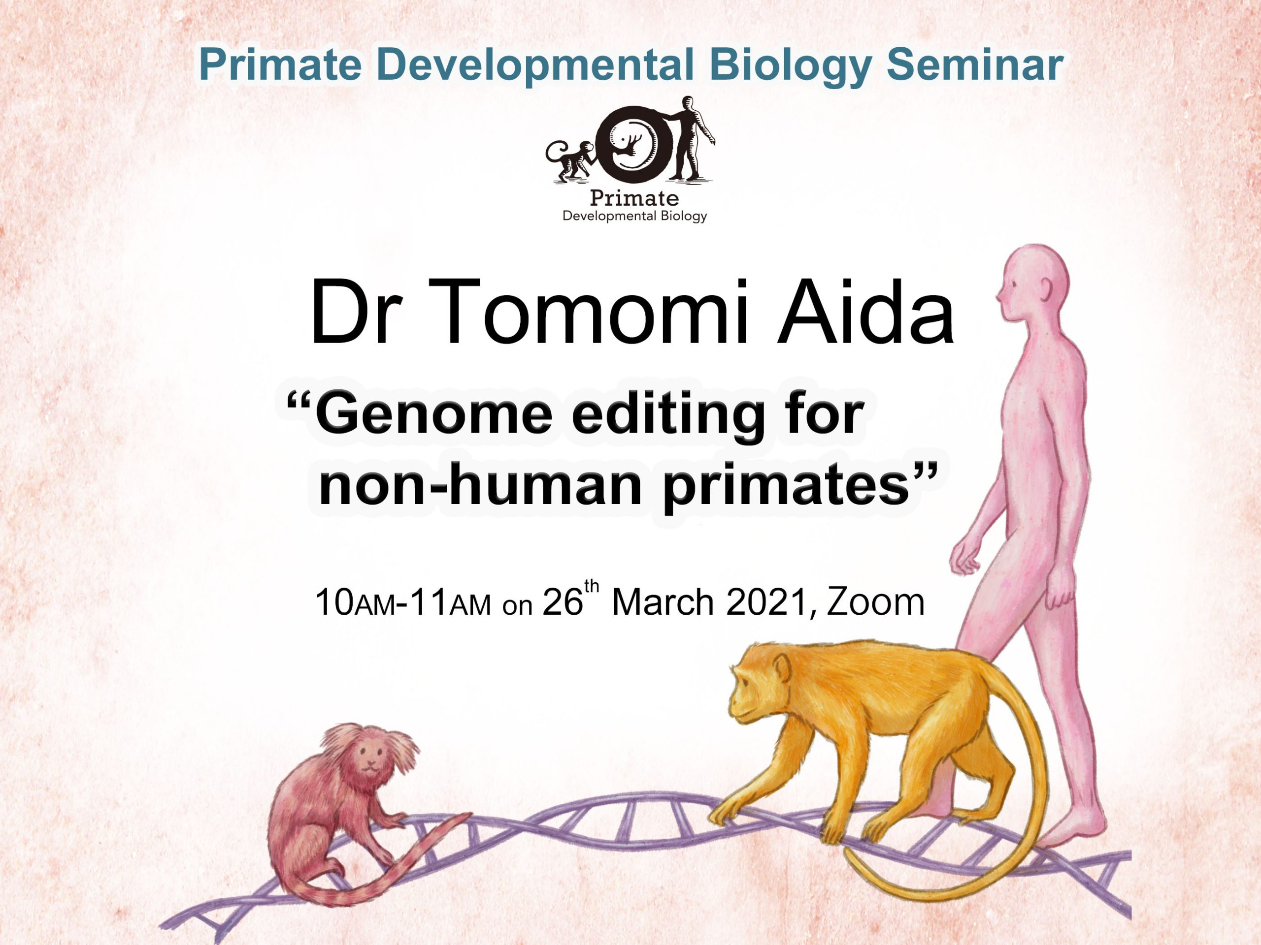 Primate Developmental Biology Seminar: (相田 知海 博士)