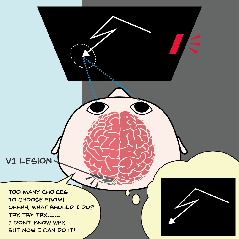 盲視マカクサルは視覚意識が無くても自発的行動を学習できる