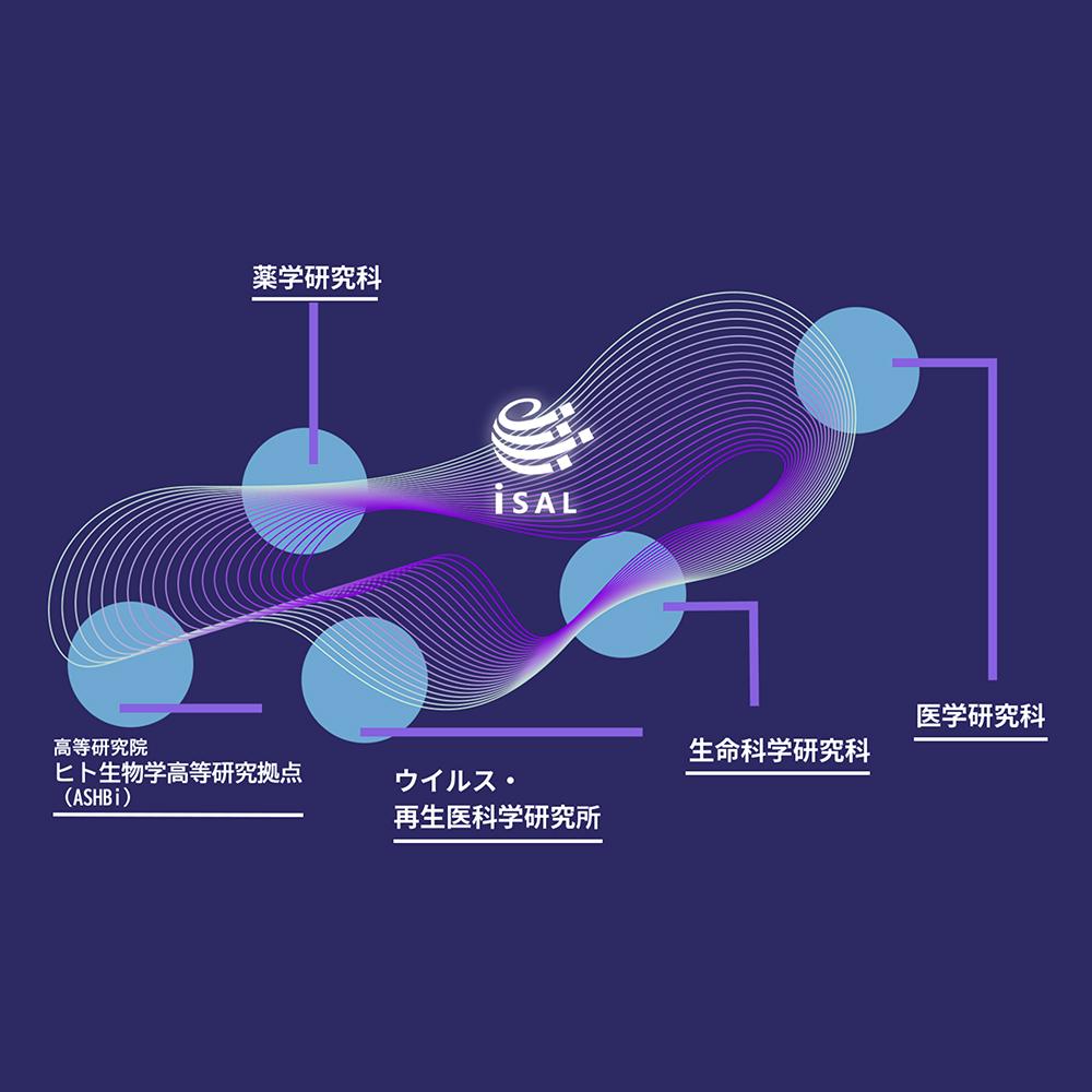 SignACがiSALに加入