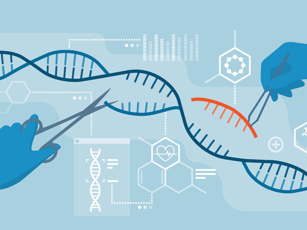 ASHBi presents a new framework to guide policies on human gene editing