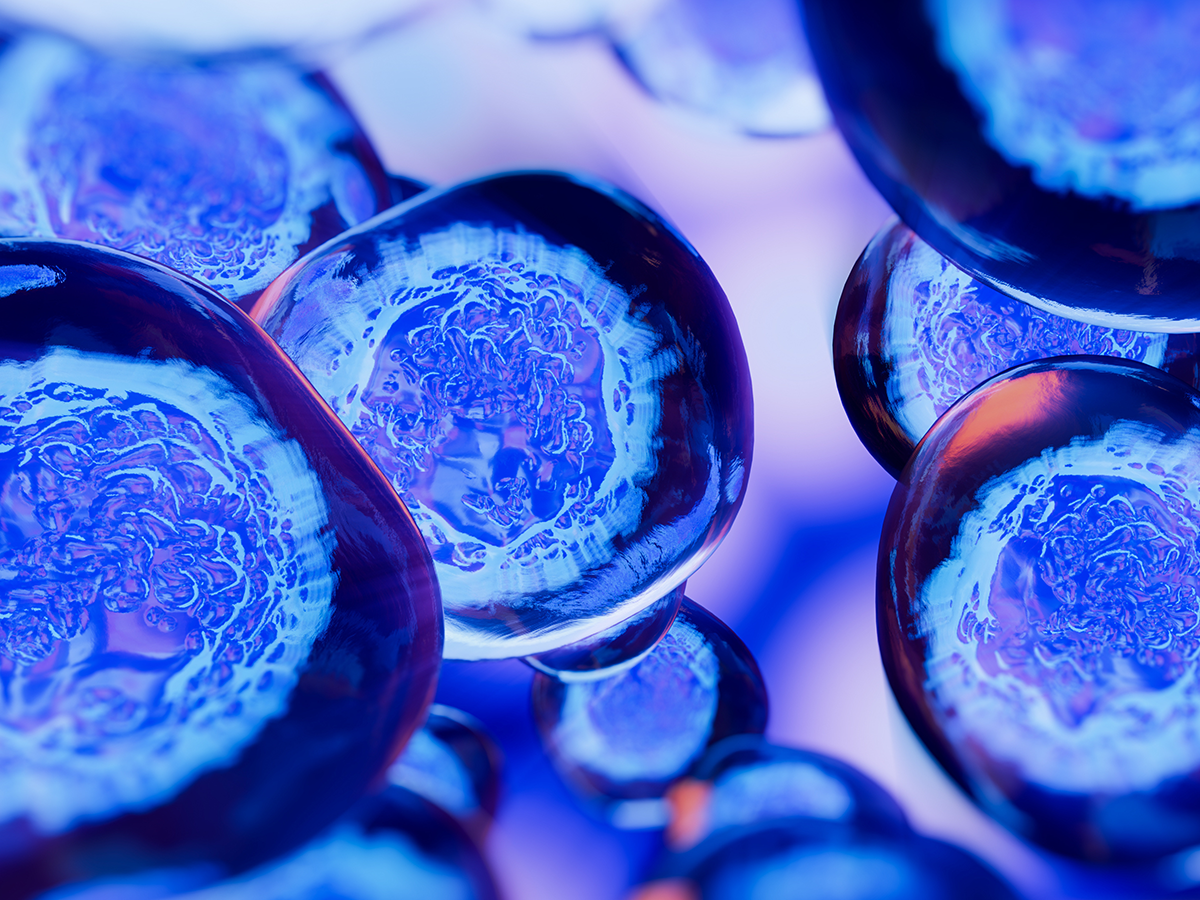 As cells grow, so does their morality